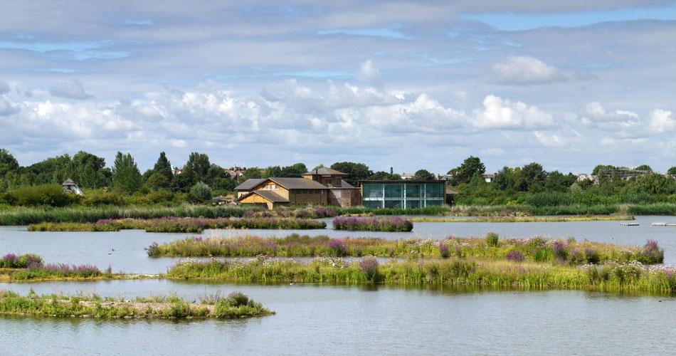 Image 3: WWT London Wetland Centre