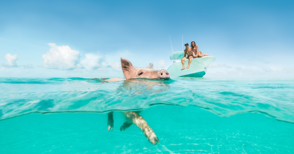 Image 3: Bahamas Tourist Office