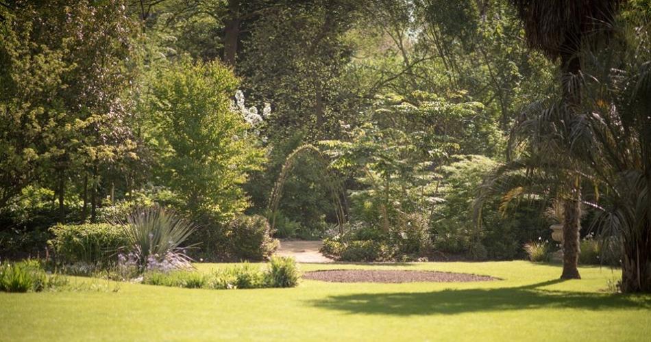 Image 3: Chelsea Physic Garden