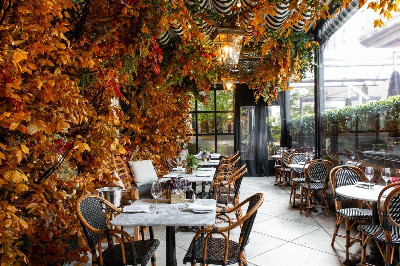 Dalloway Terrace's Enchanted Woodland at The Bloomsbury hotel London